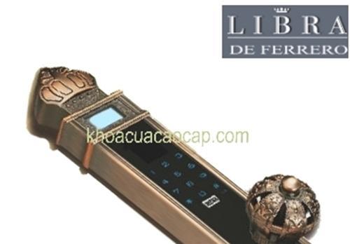 Đường nét hoa văn tuyệt mỹ của khóa vân tay lớn FM901AC